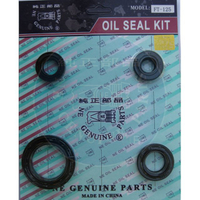 FT-125 Oil seal Set