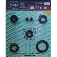 CT-110 Oil seal Set