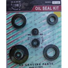 TS125 Oil seal Set
