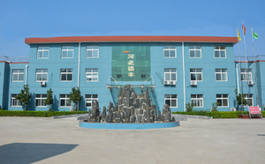 Hebei Defeng Polyester Fiber Co.,Ltd