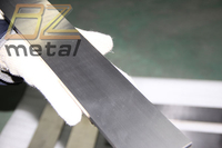 Pure Titanium Flat Strip with High Quality and Good Price