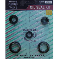 BIT-C110 Oil seal Set