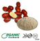 100% Natural Chinese Jujube fruit powder/Red Dates concentrate juice powder