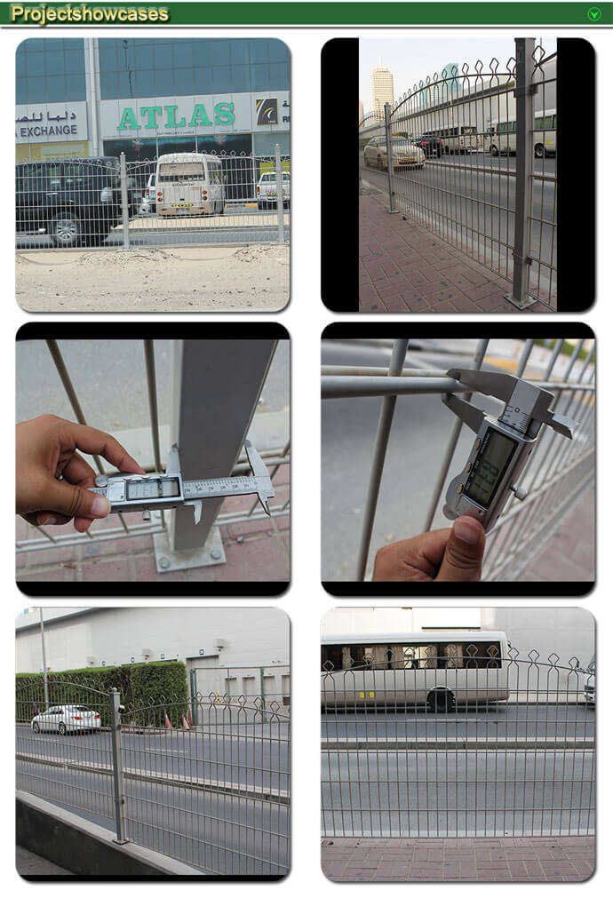 Double Wire Fence10