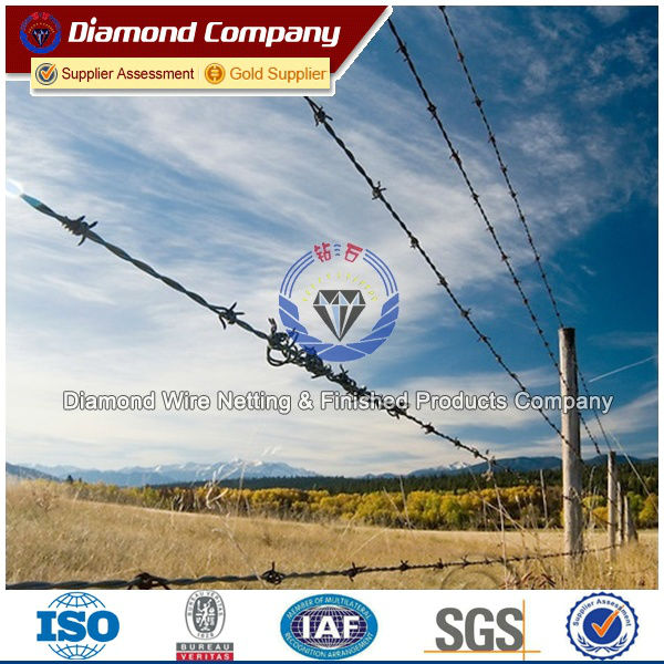 barbed wire burglar/anti-theft barbed wire mesh/installing barbed ...