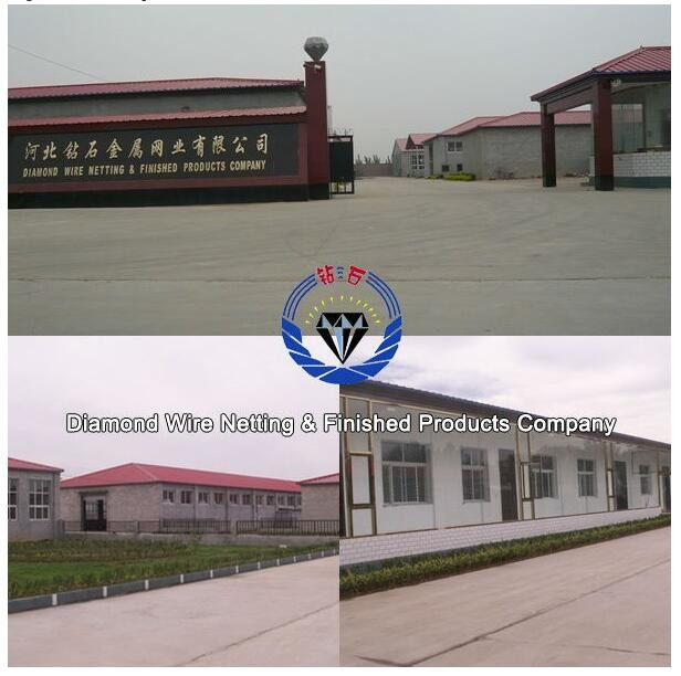 diamond-company