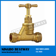 Economic Brass Stop Cock Valve for Water Pipe (BW-S10)