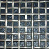 Titanium Mesh with 3 Mesh Size of 1.8*6.7mm