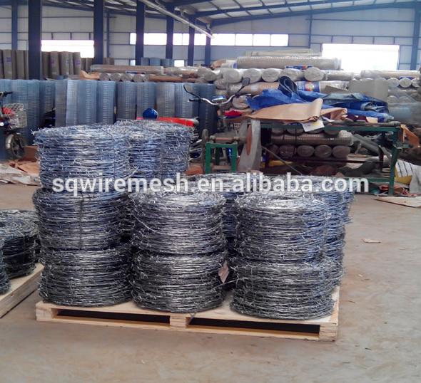 galvanized barb wire
