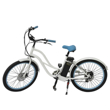 Ecofriendly Two Wheel Ebike 36V 250W for Girls