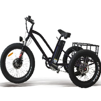 24 inch cargo electric bicycle with 3 wheels