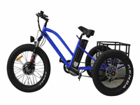 2017 New model 48V 500W fat tire electric trike for adult