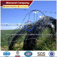 Military base galvanized barbed wire philippines