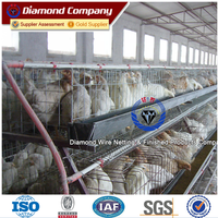 Electro Galvanized Metal Hen Coop for Africa Farmer