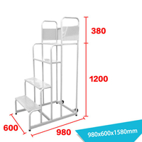 Warehouse Ladder LT-6