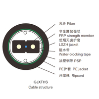 Duct OFC Drop Cable GJXFHS,1|2|4 fiber G.657.A1,APL,2.0*3.0mm low smoke zero halogen+7.0mm PE