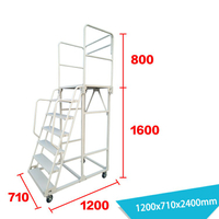 Warehouse Ladder LT-9